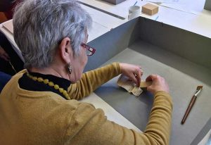 Conservation - The Biggleston Collection